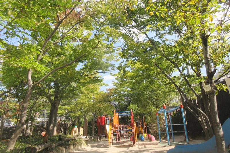 園庭の木々
